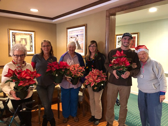 Poinsetties 4 brandywine residents